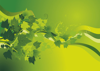 green background with vine leaves