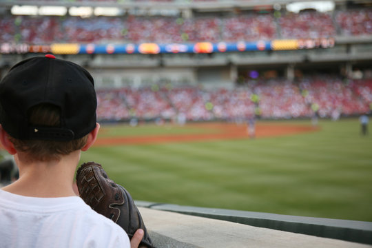 Young baseball fan watches the major league baseball game