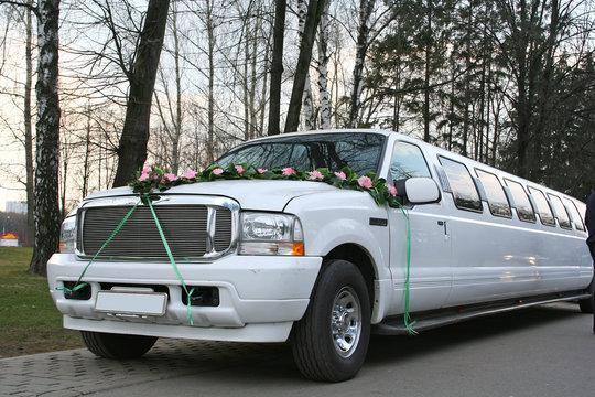 transportation wedding limousine white luxury long car