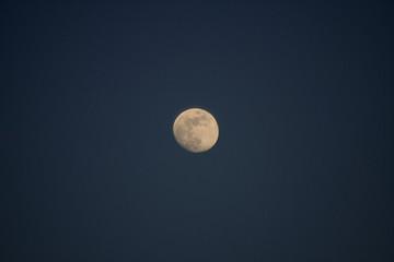 High Moon again