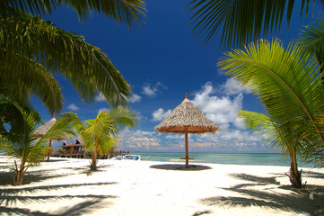Tropical beach resort with bamboo hut and coconut trees