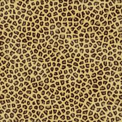 an large illustration of spotted leopard or jaguar skin or fur