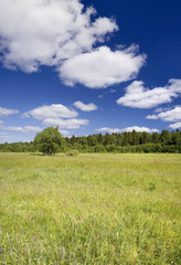 Photo of spring landscape with blue sky
