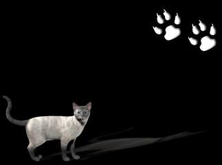 sfondo con gatto