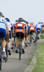 Group of competitve road cyclists