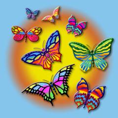 farfalle nel sole
