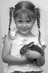 girl is played with the rabbit