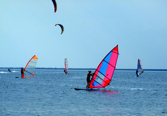 windsurfers and kitesurfers on waves of a gulf