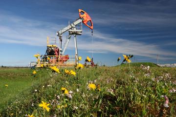 Oil pump in field