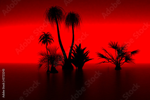 3d model palm and sunset  Made in 3ds max