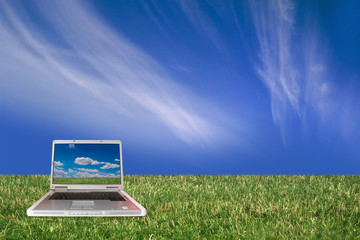 Laptop in the grass