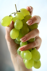 Grapes in female hands
