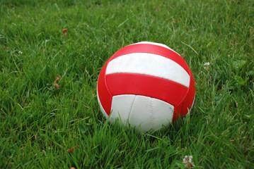 Sport ball over the grass