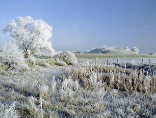 frost covered landscape christmas card scene