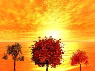 Autumn  sunrise. 3D landsape.