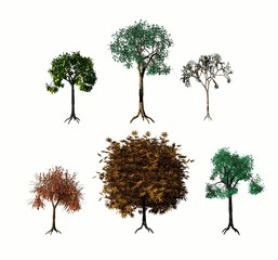 Various 3D trees on white background