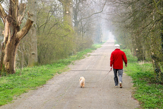 Man walking his dog on a forest path.