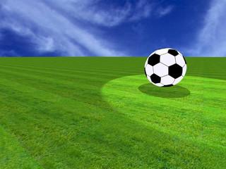A soccer ball on a grass field