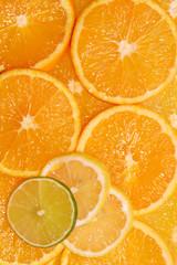 Citrus background ~ slices of organge, lemon and lime.
