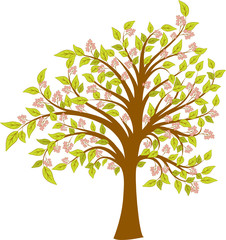 Spring blossoming tree, vector