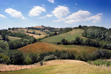 Gorgeous hilly landscape