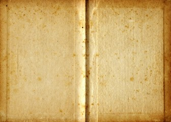 Aged blank book in sepia