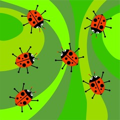 funky ladybug background