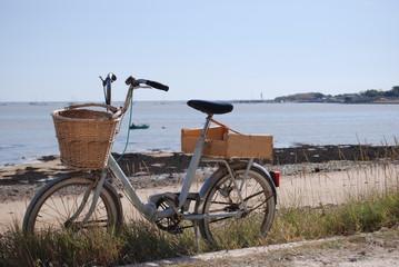In de dag Fiets vélo devant la mer