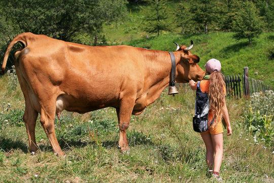 Vache et enfant