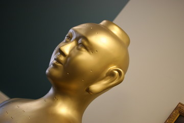 Golden Acupuncture Model