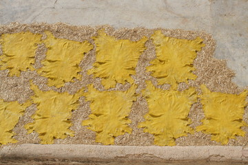 Yellow leather dries on roof of city Fez