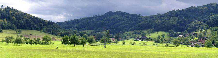 Schwarzwald - Panorama