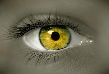 Foto op Plexiglas Iris oeil doré