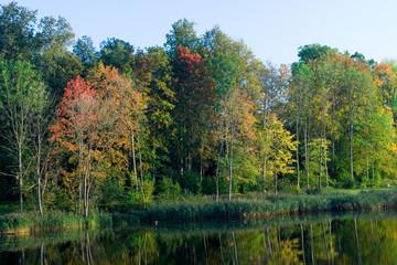 Idyllic autumn view