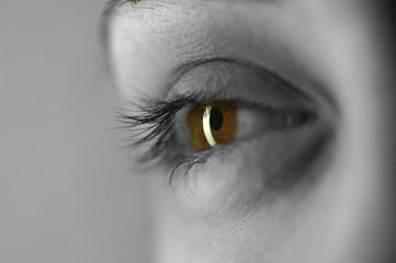 Su otro ojo