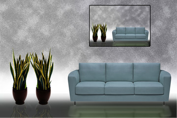 Sofa and plants pic to pic