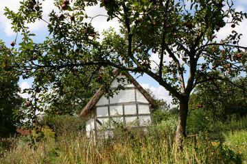 Labourer's 17c Thatched Cottage