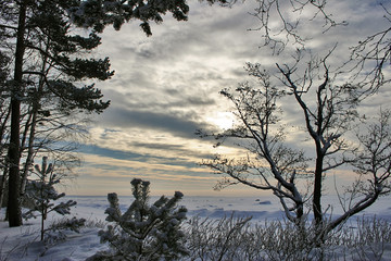 sunset under frozen sea