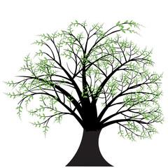 beautiful abstract vector tree design
