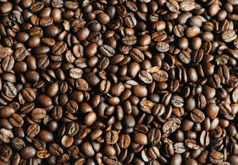 Foto op Canvas koffiebar grains de café