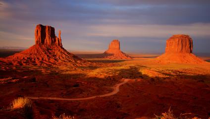 Garden Poster Brown Monument valley sunset