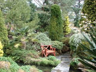 English Garden With Bench