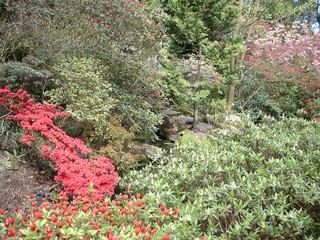 Japanise garden 18