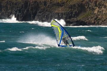 surf en planche 7