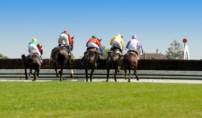 chevaux franchissant une haie de steeple-chase