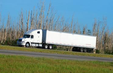 Big rig hauling cargo