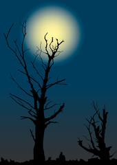 Dead trees on a background of the full moon.