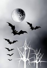 Moon and bats.