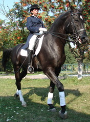 equestrian woman on black horse 2