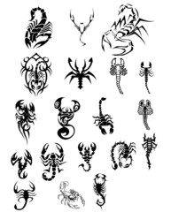vector tatoo scorpions